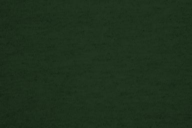forestgreen.jpg