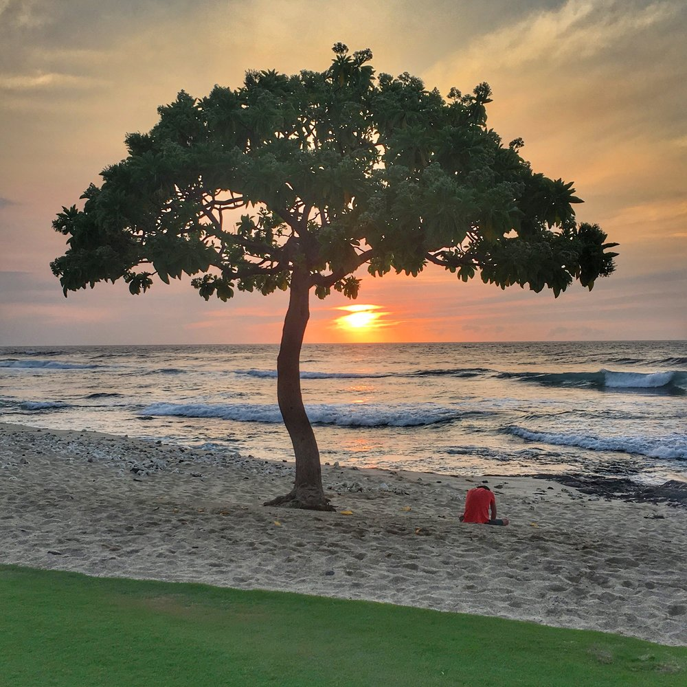 Beach Tree Restaurant, Hualalai Kona, Hawaii