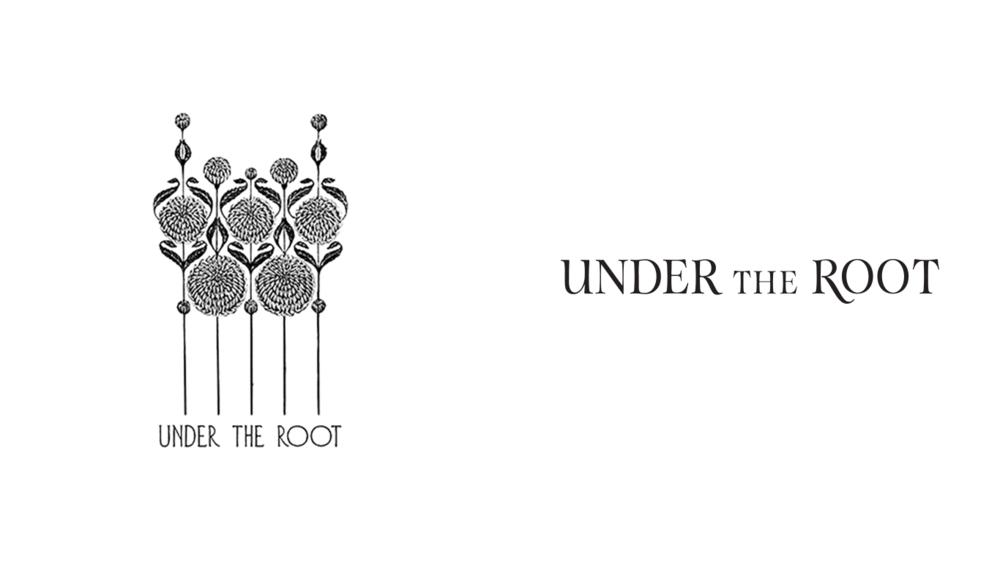 Original and Redesigned Logos