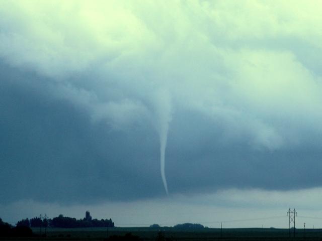 Alden Tornado