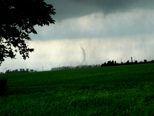 Austin Tornado 1