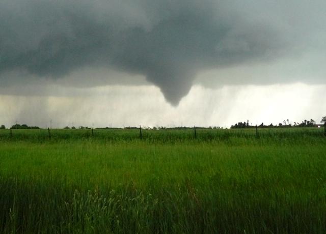 Austin Tornado 4