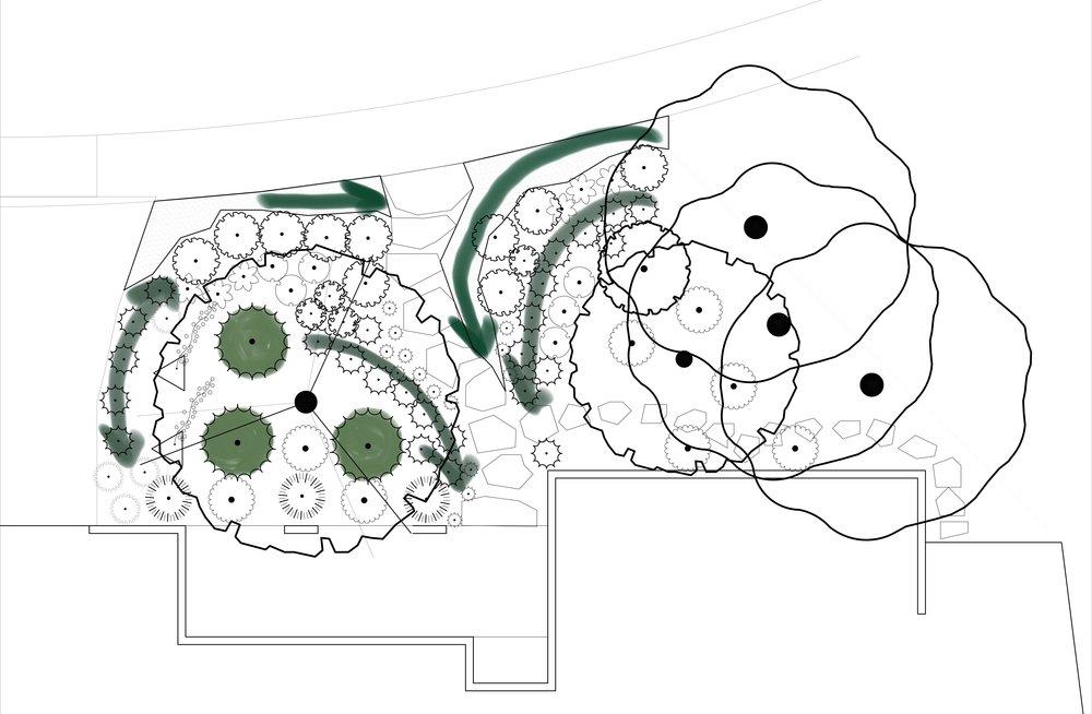 Coral.Infusion_Spacial.Diagram.jpg
