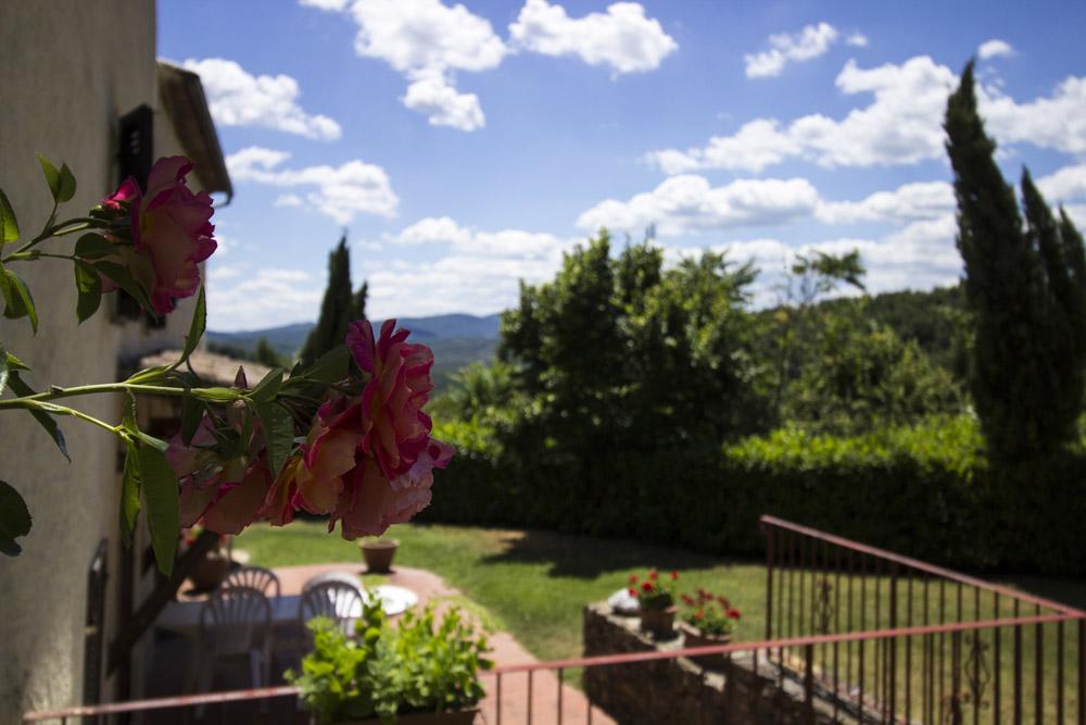 12-La-Ripa-Farm-Radicondoli-Siena-Tuscany-For-sale-working-farms-crops-and-livestock-Antonio-Russo-Real-Estate-Italy.jpg