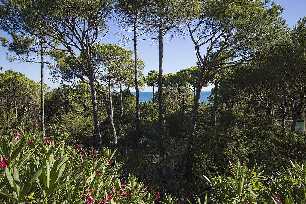 5-For-rent-luxury-villas-Italy-Antonio-Russo-Real-Estate-Villa-Eleganza-Castiglione-della-Pescaia-Tuscany.jpg