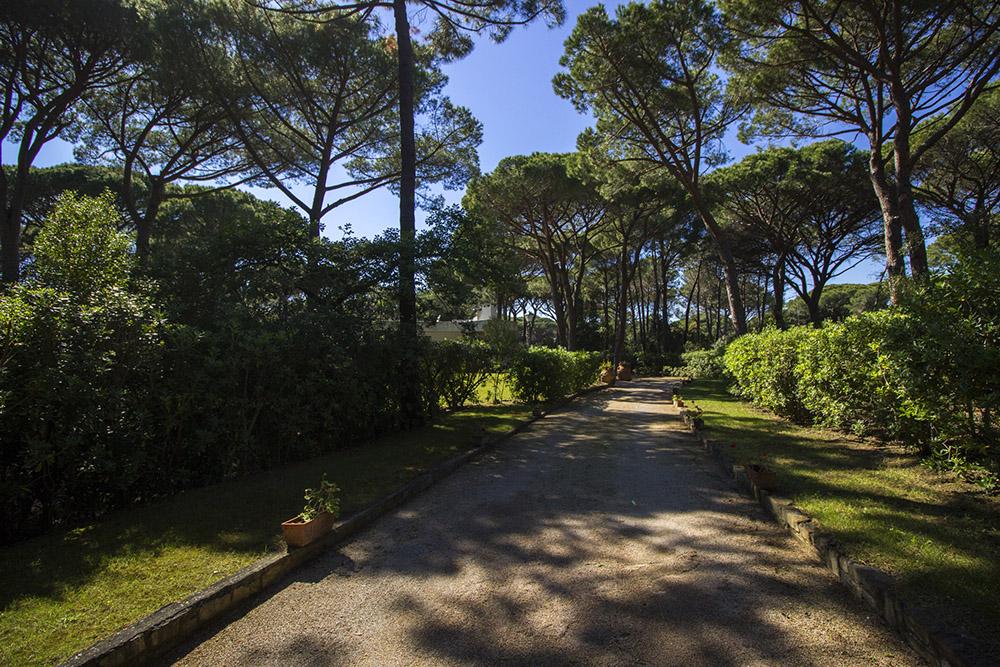 4-For-rent-luxury-villas-Italy-Antonio-Russo-Real-Estate-Villa-Monica-Castiglione-della-Pescaia-Tuscany.jpg
