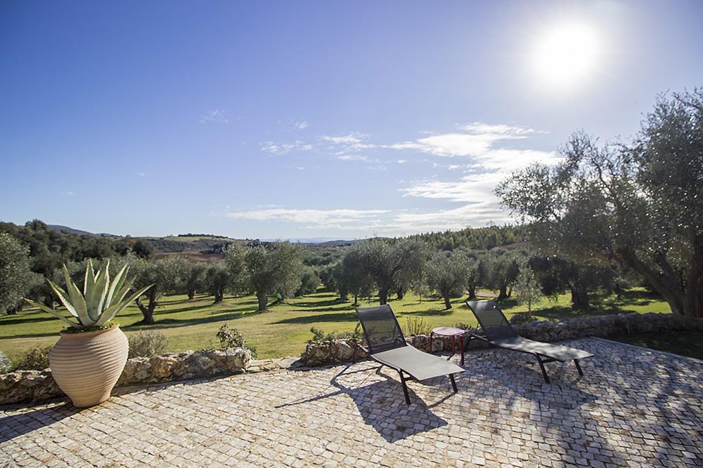 4-For-rent-luxury-villas-Italy-Antonio-Russo-Real-Estate-Villa-Capalbio-Tuscany-Maremma.jpg