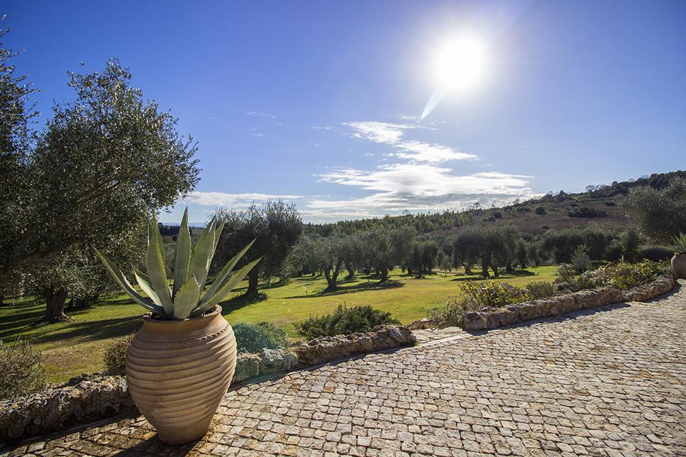 5-For-rent-luxury-villas-Italy-Antonio-Russo-Real-Estate-Villa-Capalbio-Tuscany-Maremma.jpg
