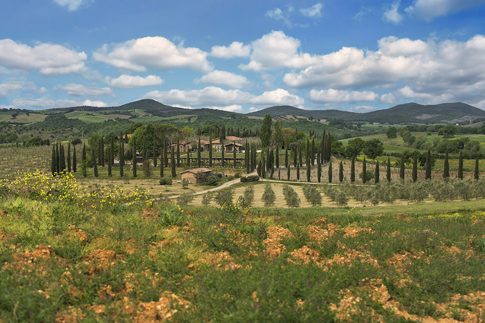 5-For-sale-luxury-holiday-farm-resort-Italy-Antonio-Russo-Real-Estate-L-Oasi-in-Maremma-Tuscany-Accommodation-Facility.jpg