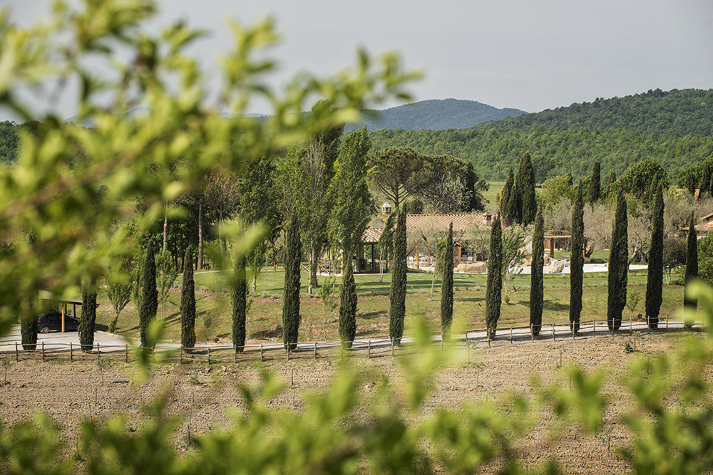 7-For-sale-luxury-holiday-farm-resort-Italy-Antonio-Russo-Real-Estate-L-Oasi-in-Maremma-Tuscany-Accommodation-Facility.jpg