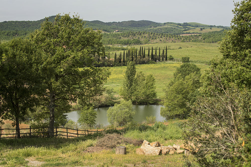 6-For-sale-luxury-holiday-farm-resort-Italy-Antonio-Russo-Real-Estate-L-Oasi-in-Maremma-Tuscany-Accommodation-Facility.jpg