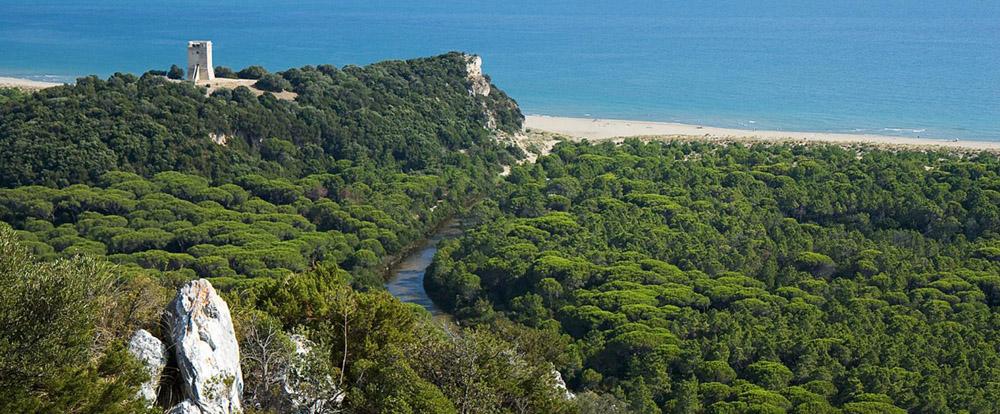 8-maremma-regional-park-uccellina-park-tuscany-antonio-russo-property-news.jpg