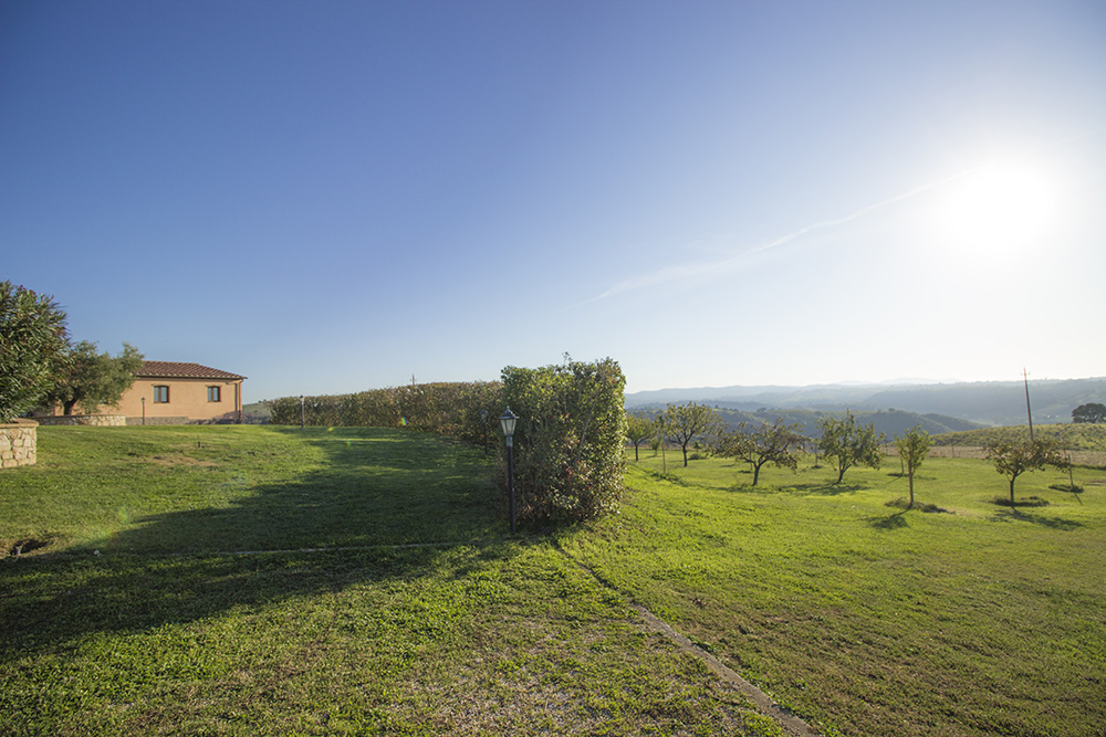 26-Casale-Preselle-Farmhouse-Scansano-Maremma-Tuscany-For-sale-farmhouses-country-homes-in-Italy-Antonio-Russo-Real-Estate.jpg
