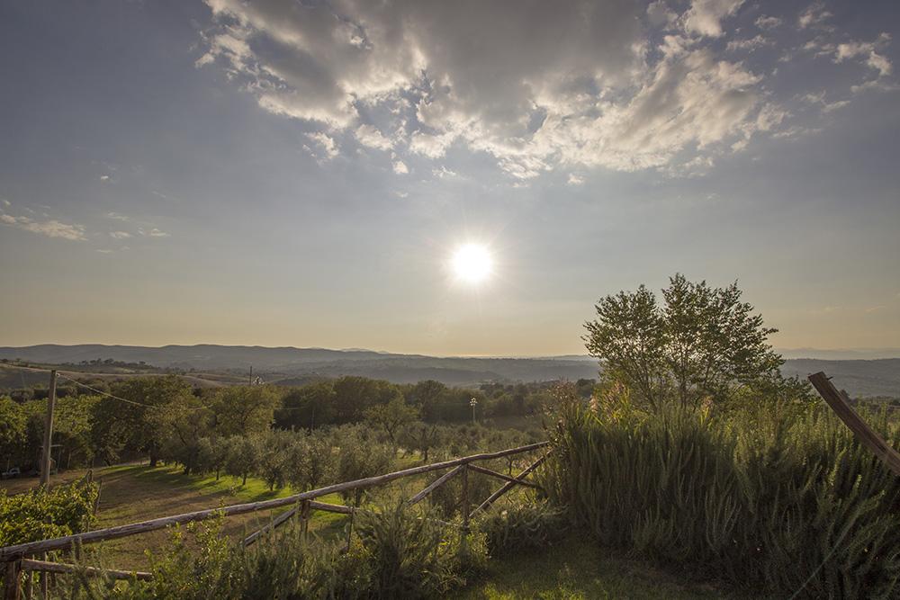 14-val-delle-vigne-farmhouse-il-morellino-working-farm-tuscany-antonio-russo-property-news.jpg