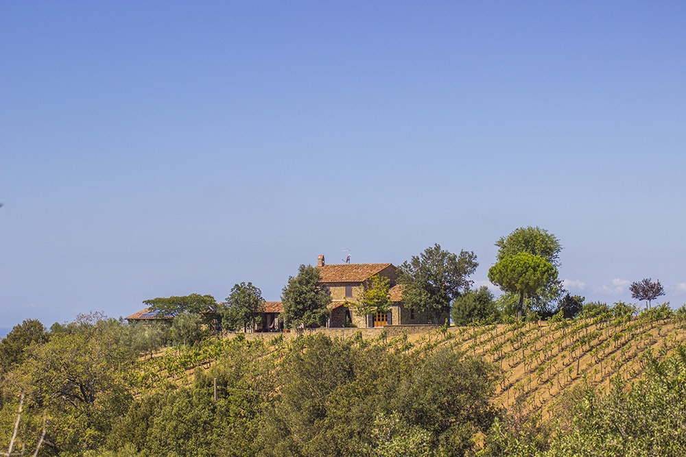 1-Working-Farm-Azienda-Agricola-Casale-Val-delle-Vigne-Scansano-Maremma-Tuscany-For-sale-farmhouses-country-homes-in-Italy-Antonio-Russo-Real-Estate.jpg