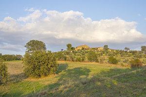1-Olive-Oil-production-Farmhouse-Azienda-Agricola-Casale-Val-delle-Vigne-Scansano-Maremma-Tuscany-For-sale-working-farm-in-Italy-Antonio-Russo-Real-Estate.jpg
