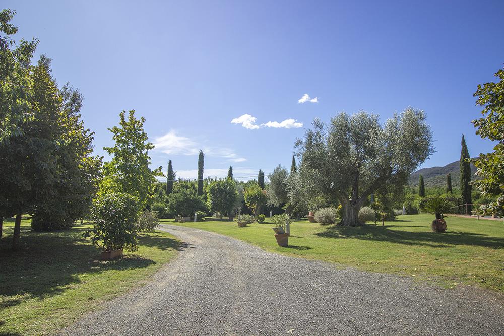 2-Maremma-Working-Farm-Grosseto-Castiglione-della-Pescaia-Tuscany-For-sale-Agriturismo-Antonio-Russo-Real-Estate-Italy.jpg