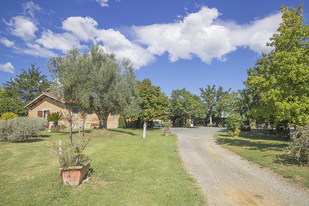 3-Maremma-Working-Farm-Grosseto-Castiglione-della-Pescaia-Tuscany-For-sale-Agriturismo-Antonio-Russo-Real-Estate-Italy.jpg
