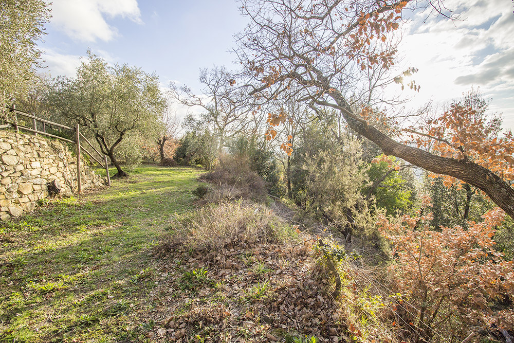15-Casale-Il-Belvedere-Farm-Scansano-Maremma-Tuscany-For-sale-farmhouses-country-homes-in-Italy-Antonio-Russo-Real-Estate.jpg