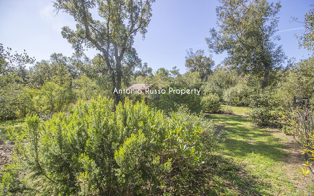 1-For-sale-luxury-villas-Italy-Antonio-Russo-Real-Estate-Villa-Renaione-Punta-Ala-Tuscany.jpg