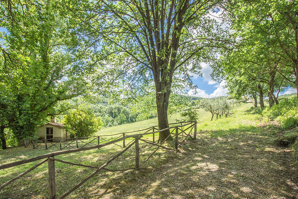 17-For-sale-unique-holiday-stay-Italy-Antonio-Russo-Real-Estate-Borgo-Il-Poeta-Umbria-Accommodation-Facility.jpg