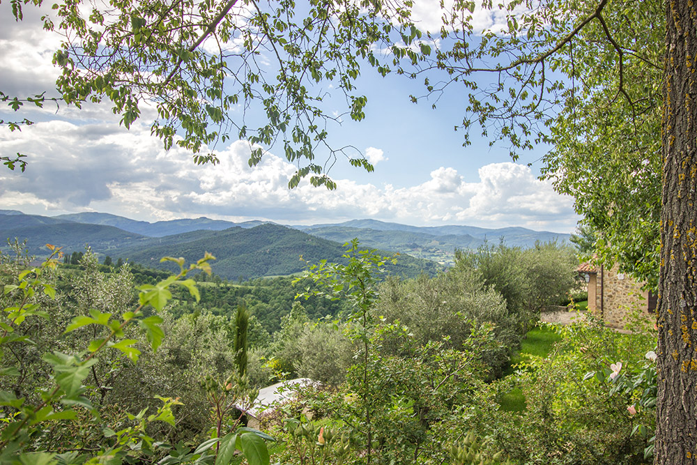 12-For-sale-unique-holiday-hamlet-Italy-Antonio-Russo-Real-Estate-Borgo-Country-Resort-Umbria-Accommodation-Facility.jpg