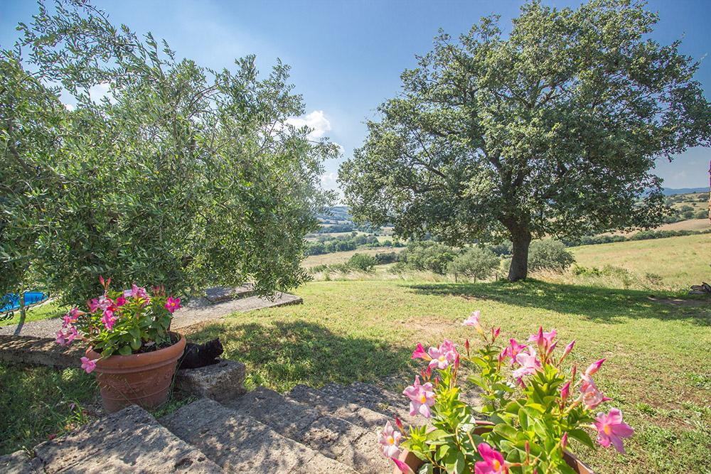 2-Casale-Il-Podere-esterno-Farm-Scansano-Maremma-Tuscany-For-sale-farmhouses-country-homes-in-Italy-Antonio-Russo-Real-Estate.jpg