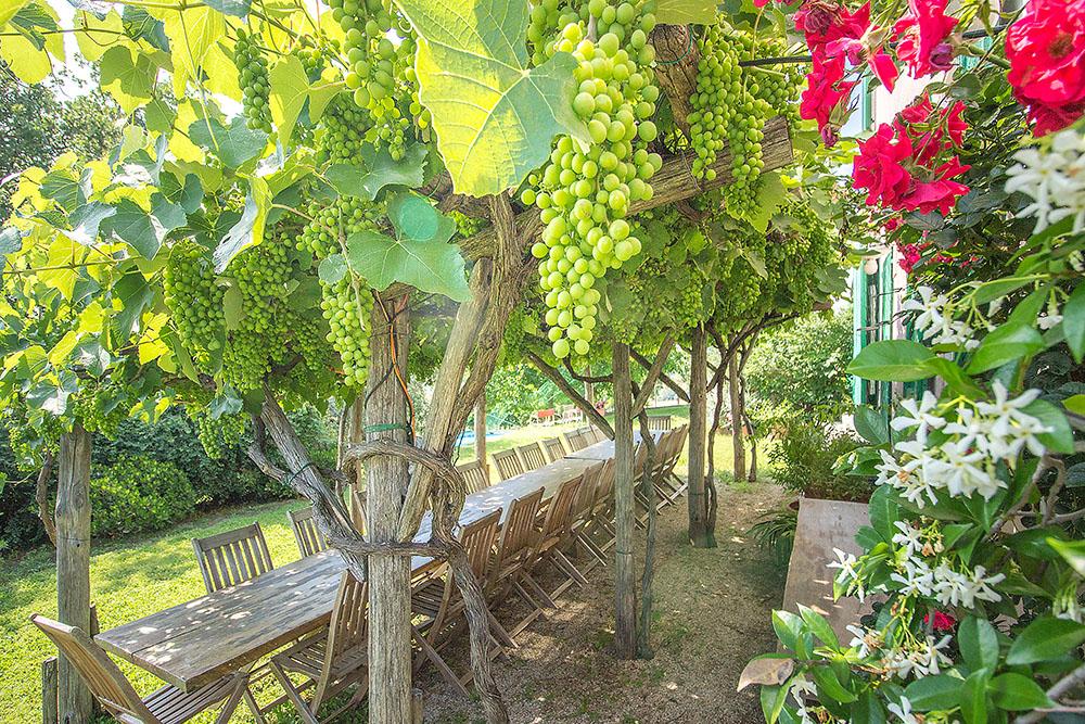 7-Casale-Il-Podere-esterno-Farm-Scansano-Maremma-Tuscany-For-sale-farmhouses-country-homes-in-Italy-Antonio-Russo-Real-Estate.jpg