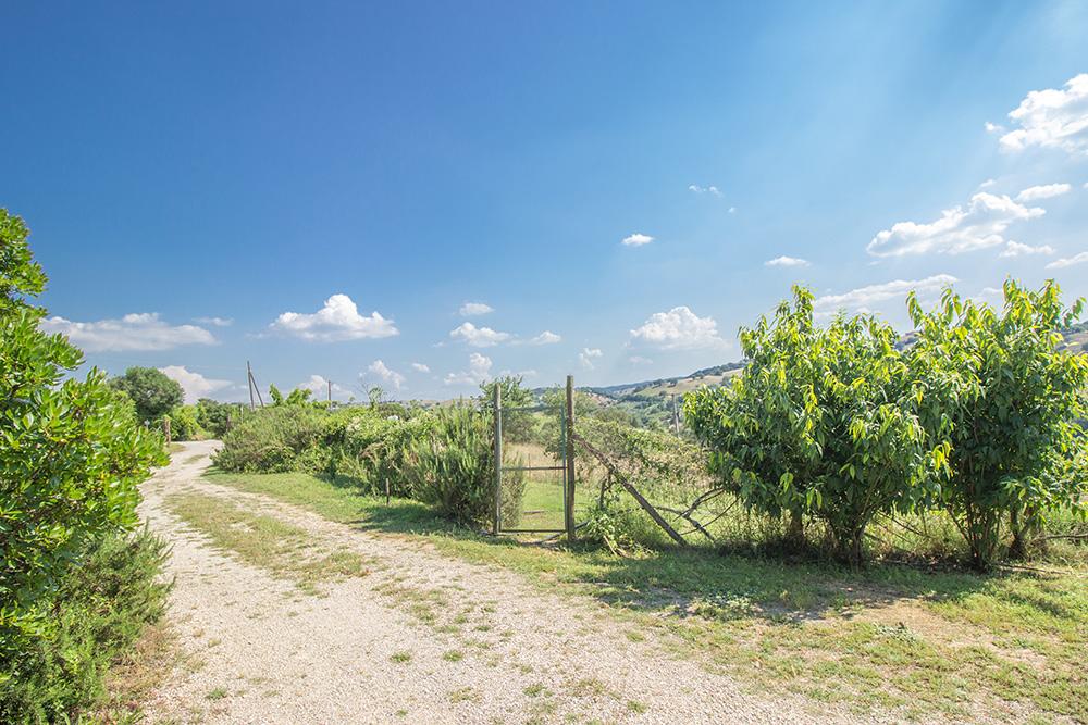 9-Casale-Il-Podere-esterno-Farm-Scansano-Maremma-Tuscany-For-sale-farmhouses-country-homes-in-Italy-Antonio-Russo-Real-Estate.jpg