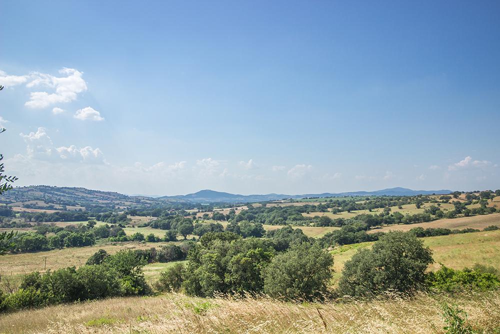 11-Casale-Il-Podere-esterno-Farm-Scansano-Maremma-Tuscany-For-sale-farmhouses-country-homes-in-Italy-Antonio-Russo-Real-Estate.jpg
