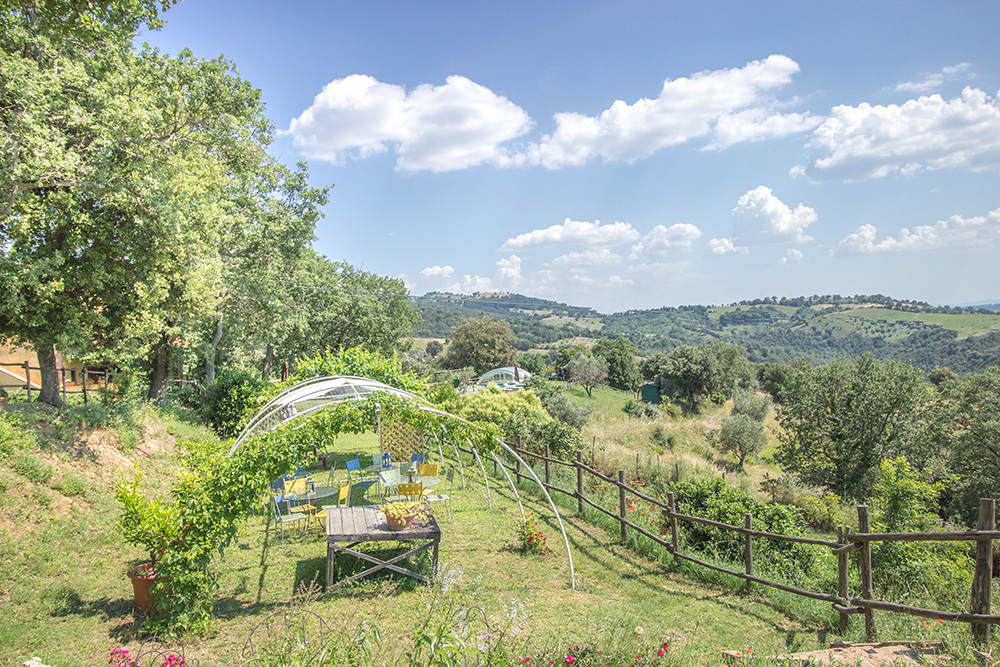 20-Property-Il-Troscione-Organic-Working-Farm-Scansano-Tuscany-For-sale-holiday-farm-Antonio-Russo-Real-Estate-Italy.jpg