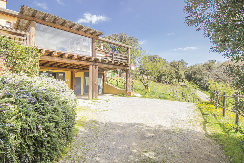 6-Farmhouse-Il-Troscione-Organic-Working-Farm-Scansano-Tuscany-For-sale-holiday-farm-Antonio-Russo-Real-Estate-Italy.jpg