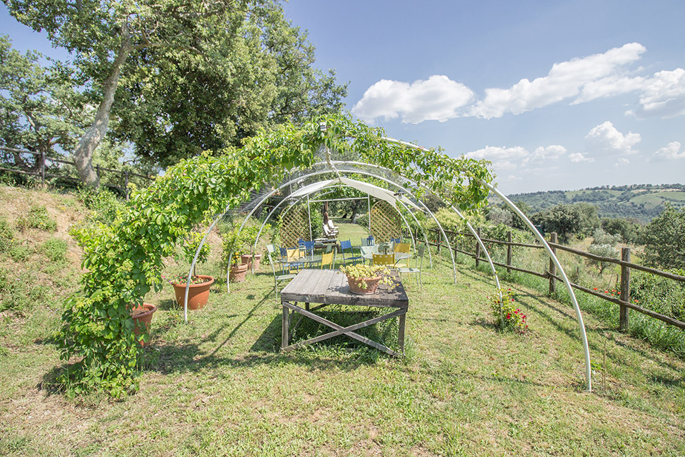 17-Farmhouse-Il-Troscione-Organic-Working-Farm-Scansano-Tuscany-For-sale-holiday-farm-Antonio-Russo-Real-Estate-Italy.jpg