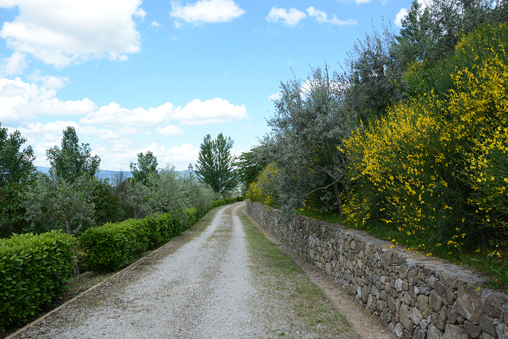 6-Casale-I-Girasoli-Farm-Umbertide-Perugia-Countryside-Umbria-For-sale-farmhouses-country-homes-in-Italy-Antonio-Russo-Real-Estate.jpg