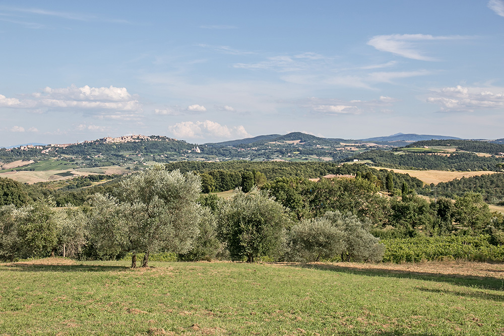 8-Casale-Dolci-Colline-Farm-Pienza-Siena-Countryside-Tuscany-For-sale-farmhouses-country-homes-in-Italy-Antonio-Russo-Real-Estate.jpg