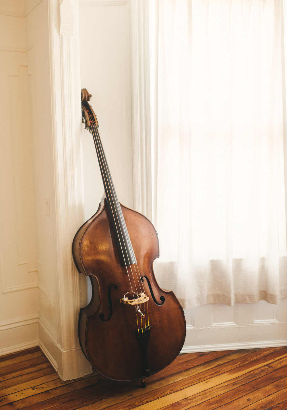 Alex Tremblay Bass Music - Photos 3