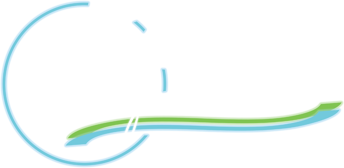 The Medical Spa Show
