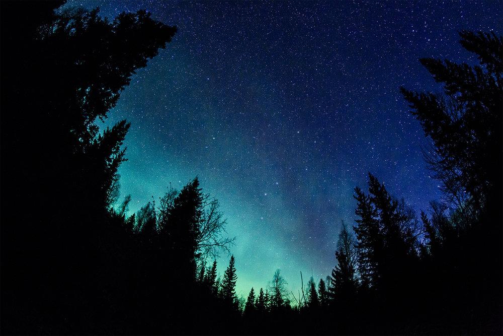 empress_aurora_web.jpg