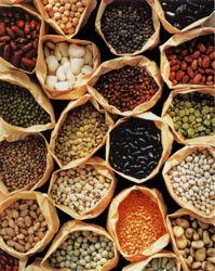 Beans-Peas-and-Lentils-Posters.jpg