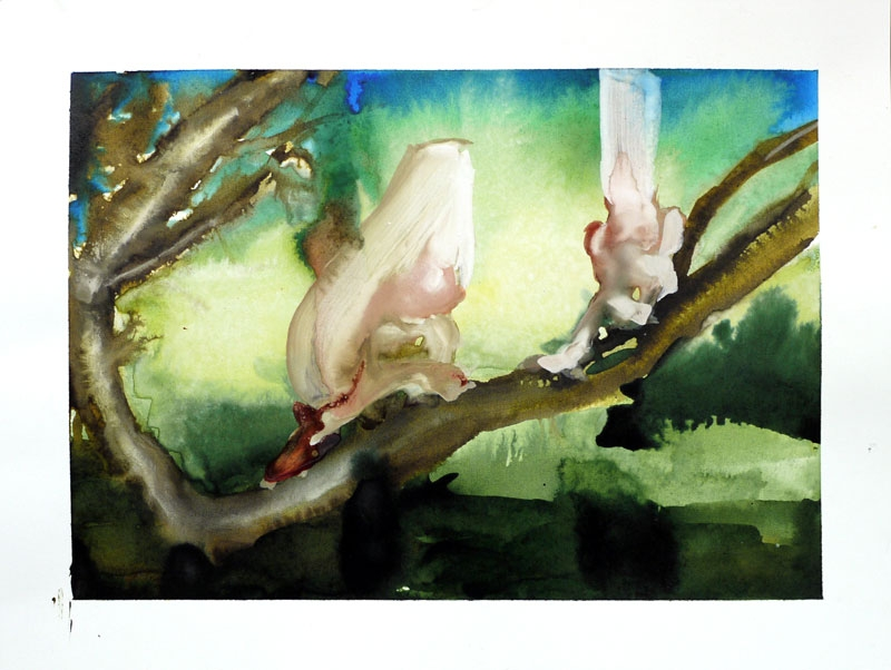 Tree Dwellers
