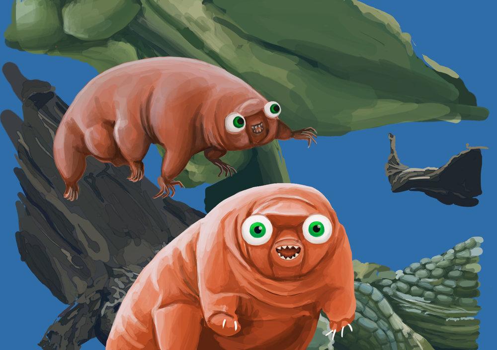 tardigrade2.jpg