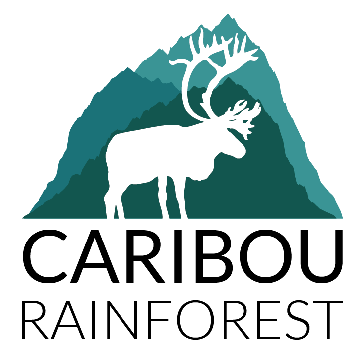 Caribou Rainforest