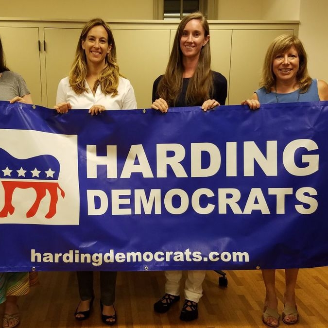 The Present is Female: Campaigning For Democratic Candidates In An All-Republican Township - ROAR JOURNAL: I found myself in the unlikely position earlier a week ago of calling up a hundred residents of my hometown of Harding, New Jersey, to advocate for two pro-choice Democratic female candidates for the township committee(28 December 2017)