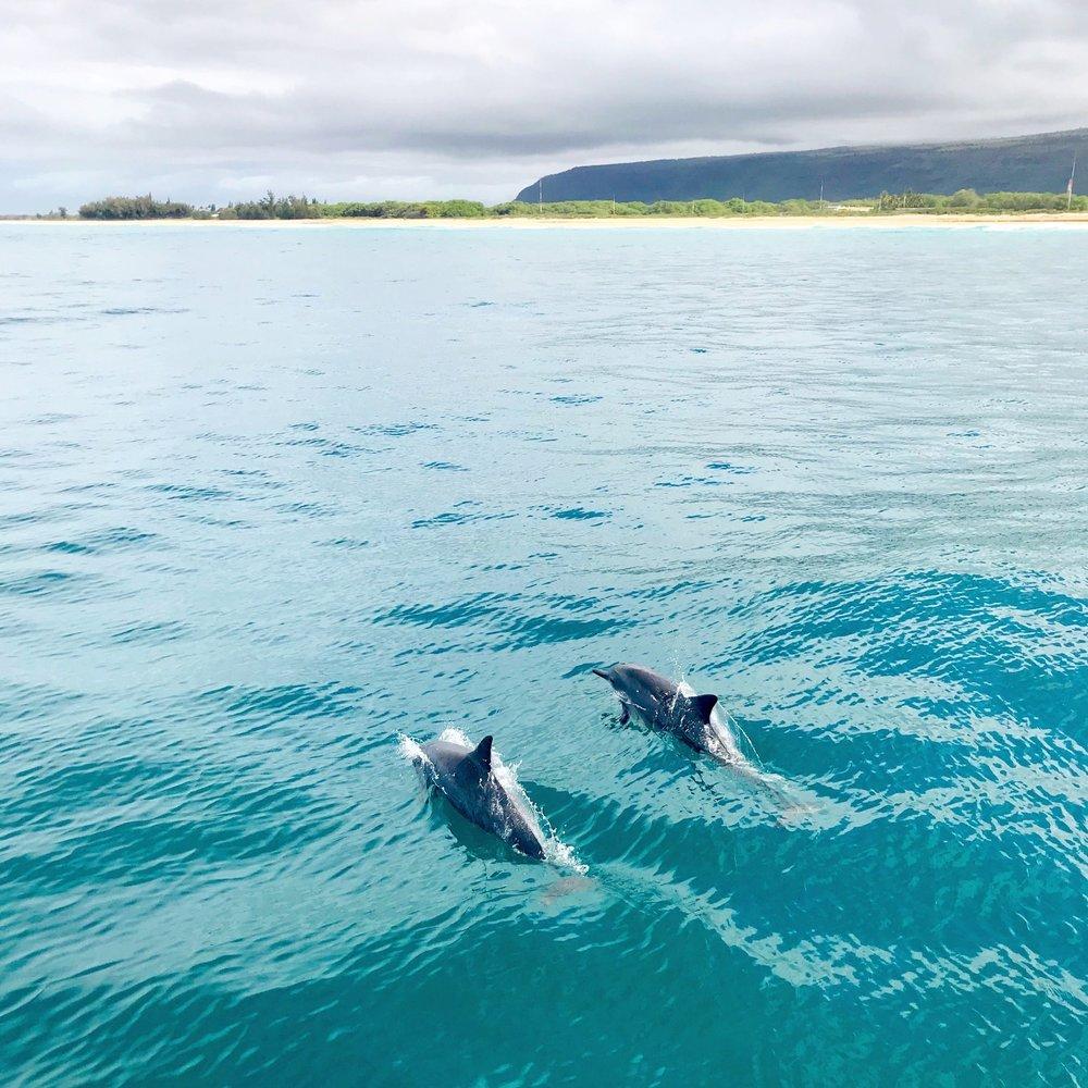 Discovering Gratitude Along The Na Pali Coast in Kauai - Electrify Magazine
