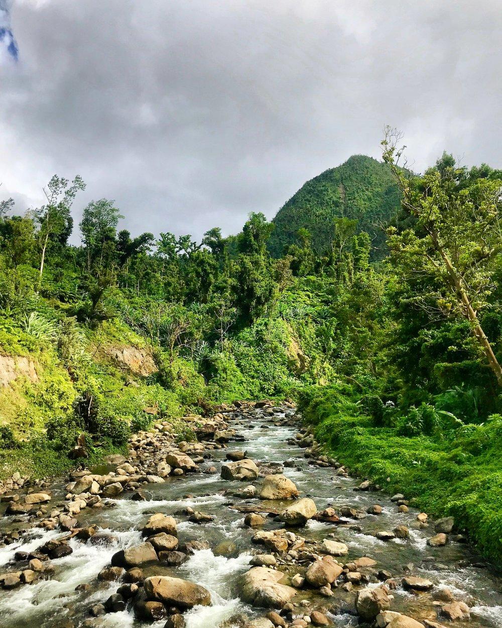 Dominica: the Caribbean's Best Kept, Gorgeous Secret - April 2019
