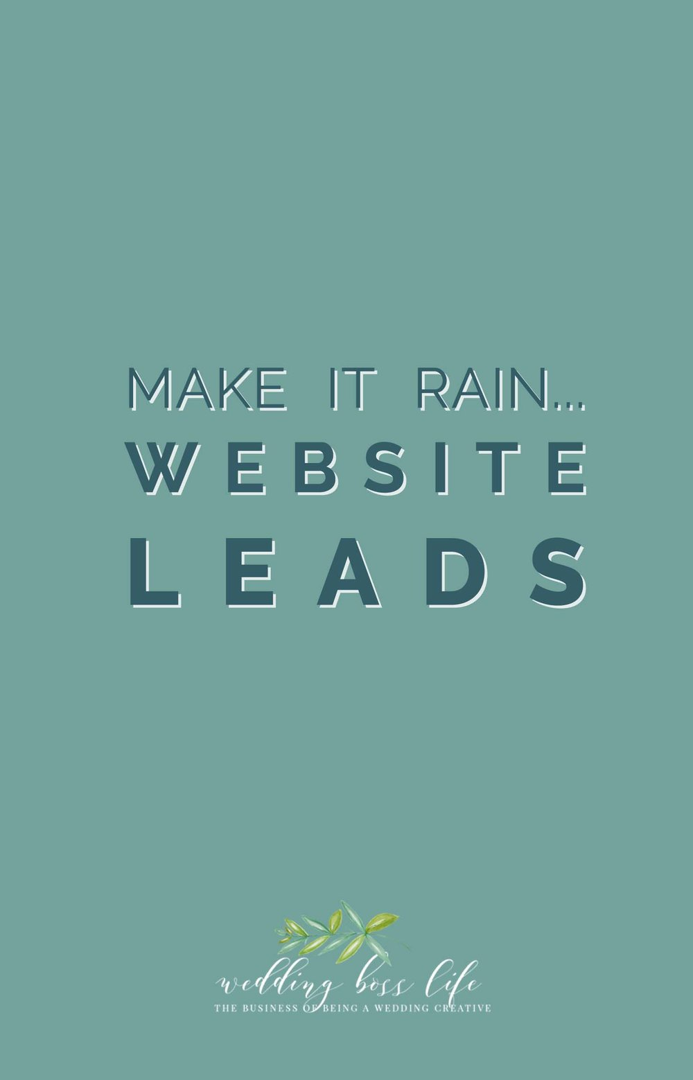 Make it Rain Website Leads
