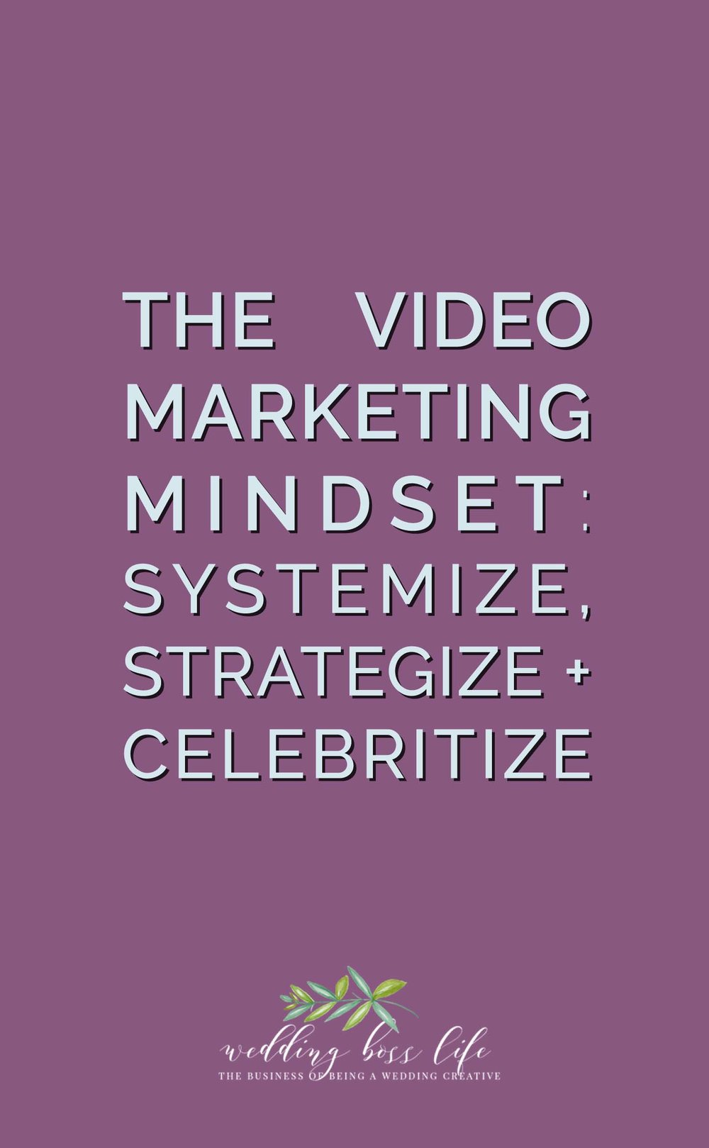 How to Systemize, Strategize, and Celebritize Your Video Marketing Efforts