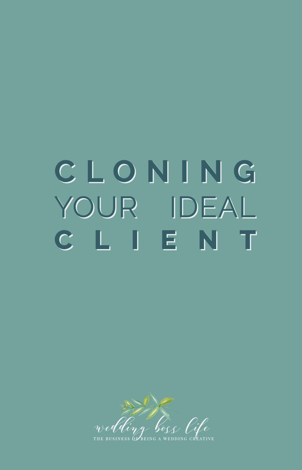 The Art of Cloning Your Ideal Client