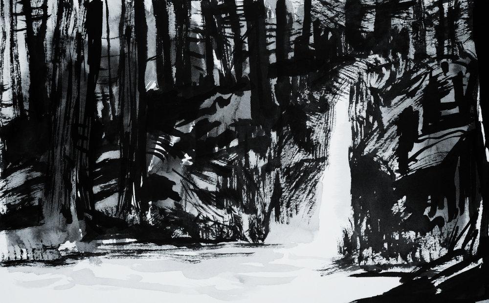 forestland1.jpg