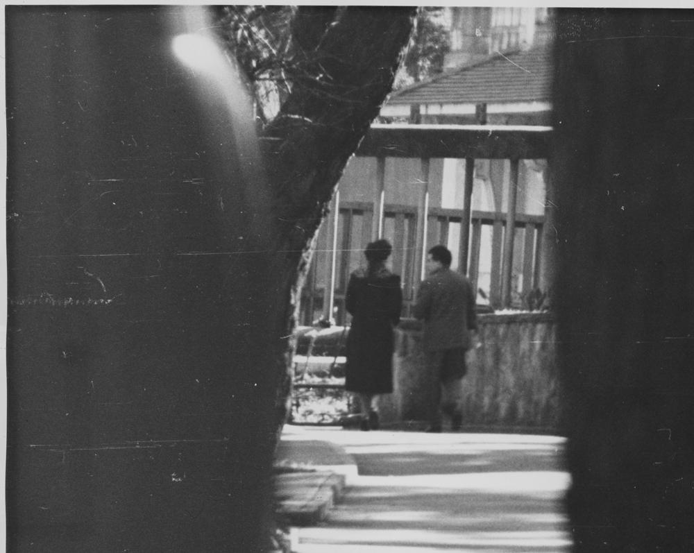 Meeting between Ivan Skripov and Kay Marshall at Taronga Park Zoo, 1962.
